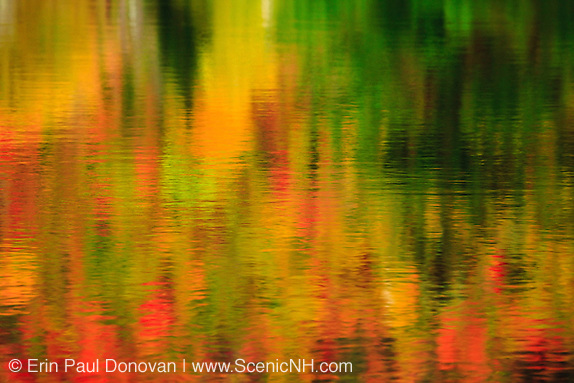 Reflection of autumn foliage in Wildlife Pond in Bethlehem, New Hampshire.