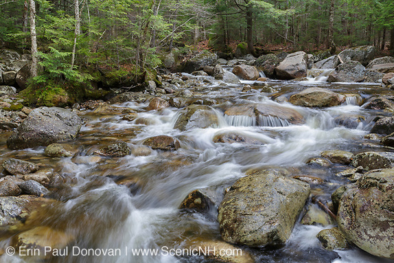 Cascade Brook in Lincoln, New Hampshire on a spring day. This brook is located along the Basin-Cascades Trail.