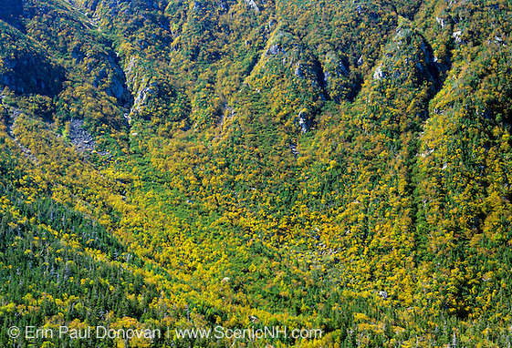 Looking down into King Ravine from Chemin Des Dames Trail in the Northern Presidential Range of the White Mountains, New Hampshire USA during the autumn season. Snow can be found in the ice caves of this ravine during the summer months.