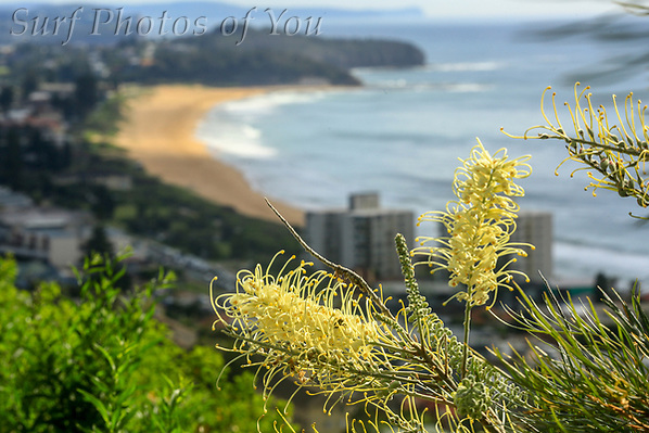 $45.00,20 March 2020, Narrabeen, Dee Why, Surf Photos of You, @surfphotosofyou, @mrsspoy (SPoY)