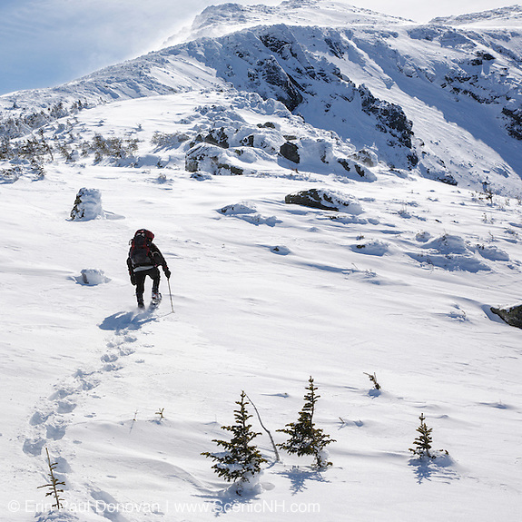 This is the image for January in the 2016 White Mountains New Hampshire calendar. A winter hiker ascends the Air Line Trail in extreme weather conditions in the White Mountains, New Hampshire.