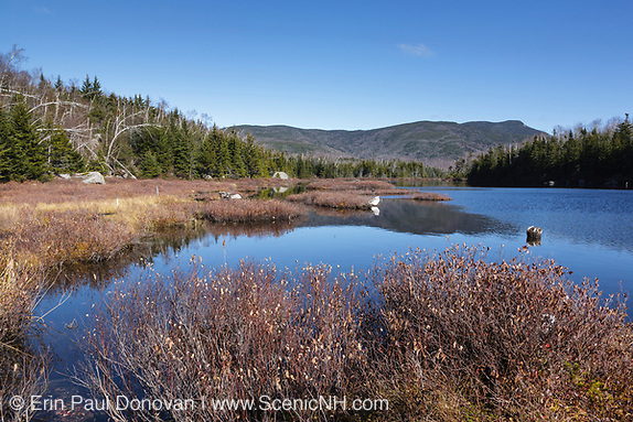 Flat Mountain Ponds in the Sandwich Range Wilderness of Waterville Valley, New Hampshire during the autumn months.