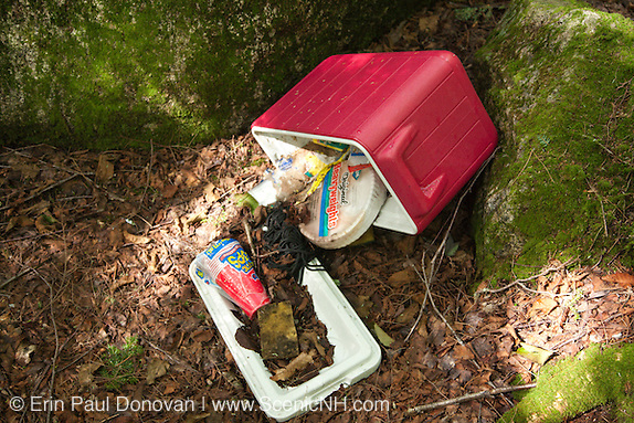 "Poor ""Leave No Trace"" habits on the the side a Sawyer River Trail in the White Mountains, New Hampshire USA."