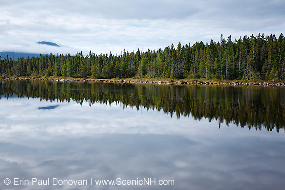 Pemigewasset Wilderness - Mount Carrigain from Shoal Pond during the summer months in Lincoln, New Hampshire USA. This is a remote pond in the Pemigewasset Wilderness
