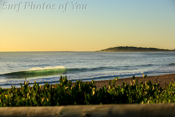 $45.00, 12 February 2019, Long Reef, Dee Why, Narrabeen, Surf Photos of You, @surfphotosofyou, @mrsspoy (SPoY)