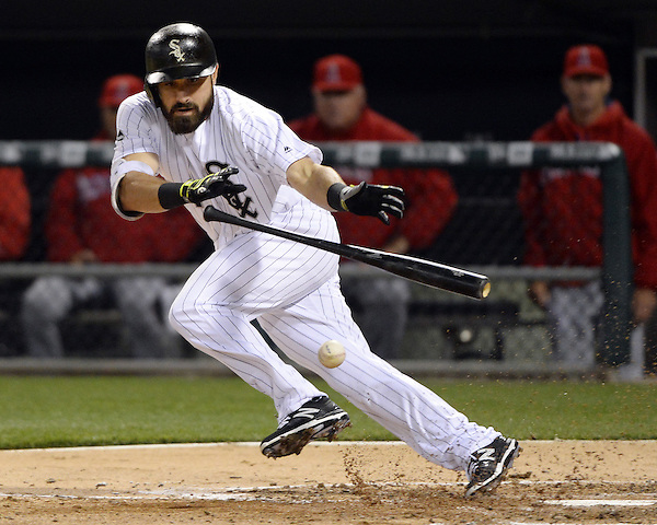CHICAGO - APRIL 19: Adam Eaton #1 of the Chicago White Sox bunts against the Los Angeles Angels on April 19, 2016 at U.S. Cellular Field in Chicago, Illinois. The White Sox defeated the Angels 5-0. (Photo by Ron Vesely) Subject: Adam Eaton (Ron Vesely)