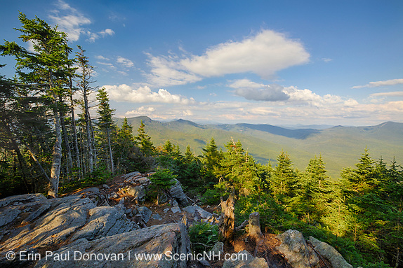 August 2015 - View from the summit of Mt Tecumseh in Waterville Valley, New Hampshire. Ongoing illegal cutting over the last few years has changed the landscape of the summit.