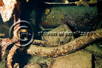 Engine Room Remnants, Oro Verde, Shipwreck, Grand Cayman (Steven Smeltzer)