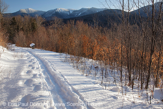 The Forest Discovery Trail in the White Mountain National Forest of New Hampshire USA during the winter months. This trail is a living classroom in ecological management.
