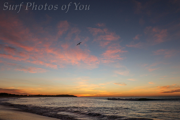$45.00, 12 June 2018, Long Reef, Dee Why, Surf Photos of You, @surfphotosofyou, @mrsspoy ($45.00, 12 June 2018, Long Reef, Dee Why, Surf Photos of You, @surfphotosofyou, @mrsspoy)