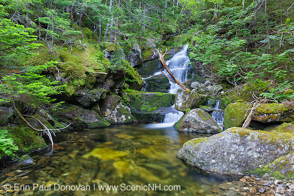 One of the many cascades located above Duck Fall on Snyder Brook in Low and Burbank's Grant, New Hampshire during the summer months. This is possibly Marian Fall.
