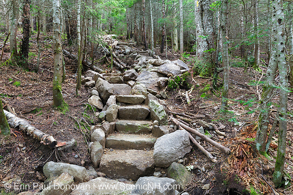 July 2016 - Newly built stone steps along the Mount Tecumseh Trail in Waterville Valley, New Hampshire during the summer months.