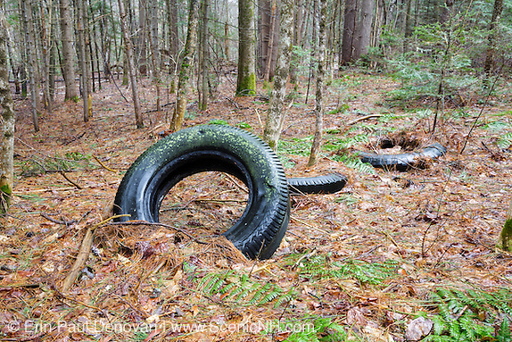 Impact photo of abandoned tires in forest along Route 112 in Easton, New Hampshire.