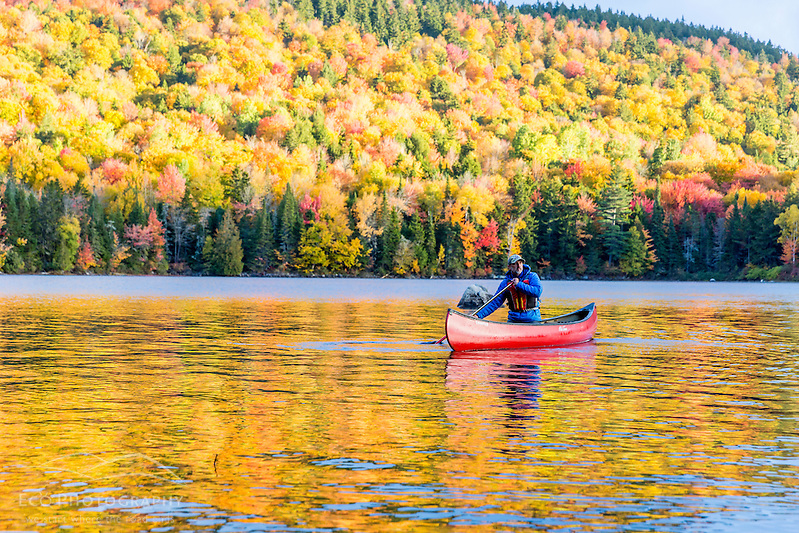 A man canoeing on Greenough Pond in Wentworths Location, New Hampshire. Fall. Northern Forest. (Jerry and Marcy Monkman)