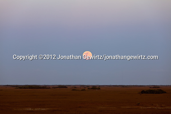 The so-called super moon -- a full moon on the date of the moon's closest annual approach to Earth -- as seen from the observation tower in the Shark Valley section of Everglades National Park, Florida on May 5, 2012. (©2012 Jonathan Gewirtz/jonathangewirtz.com)