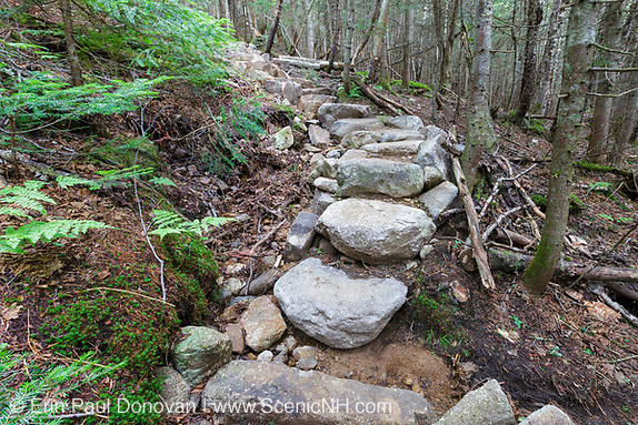July 2015 - Hillside erosion (and the first step is being undermined) next to stone steps along the Mt Tecumseh Trail in Waterville Valley, New Hampshire. The impact on the left side is from the building of the stairs. When this image was taken, this staircase was only a year or two old.