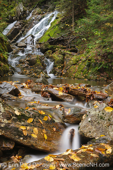 Huntington Cascades along Cascade Brook during the autumn months in Dixville, New Hampshire.