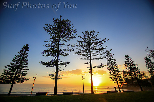 $45.00, 20 december 2018, Surf Photos of You, Curl Curl, Dee Why, Narrabeen, @surfphotosofyou, @mrsspoy (SPoY)