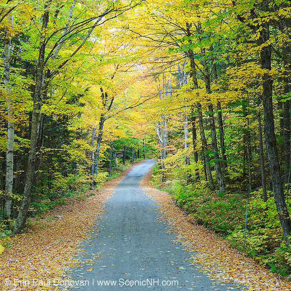 This is the image for October in the 2016 White Mountains New Hampshire calendar. Dolly Copp Road in Randolph, New Hampshire USA.