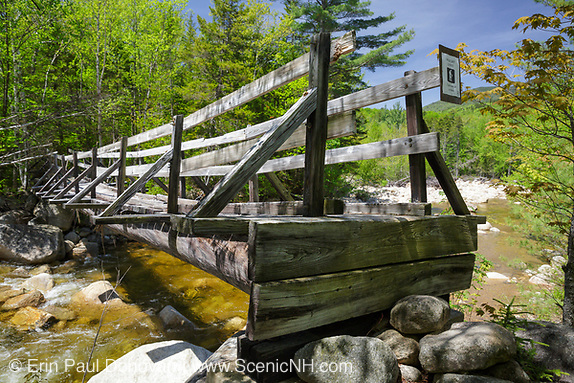 Bridge along the Thoreau Falls Trail in Pemi Wilderness of Lincoln, New Hampshire.