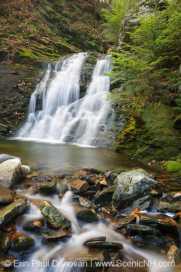 Tributary of the Wild Ammonoosuc River on the side of Mt. Blue in Kinsman Notch of the White Mountains, New Hampshire during the autumn months.