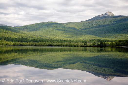 Mount Chocorua from Chocorua Lake in Tamworth, New Hampshire USA during the summer months (ScenicNH.com Photography | Erin Paul Donovan)