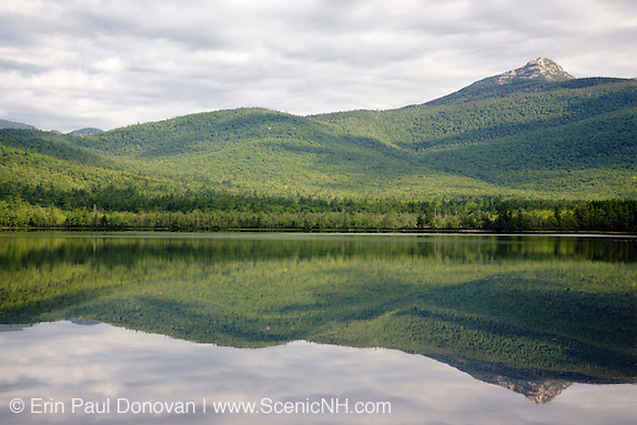 Happy Earth Day from the White Mountains of New Hampshire USA. Mount Chocorua from Chocorua Lake in Tamworth, New Hampshire during the summer months. The reflection in this lake is awersome!