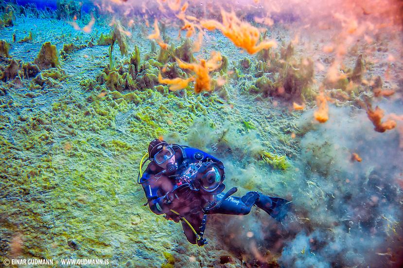 Diving in Kelduhverfi, Iceland (Einar Gudmann)