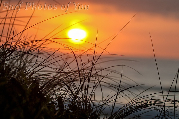 $45, 4 March 2021, Dee Why Point, South Narrabeen, North Narrabeen, Surf Photos of You @surfphotosofyou, @mrsspoy, ($45, 4 March 2021, Dee Why Point, South Narrabeen, North Narrabeen, Surf Photos of You @surfphotosofyou, @mrsspoy,)