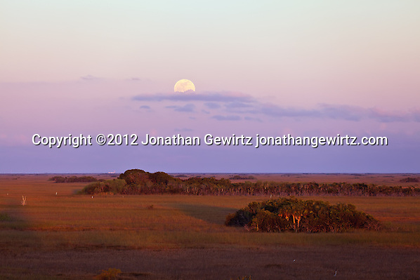 The full moon rises above the eastern horizon opposite the setting sun, as seen from the Shark Valley observation tower in Everglades National Park, Florida on January 8, 2012. (© Jonathan Gewirtz, jonathan@gewirtz.net)
