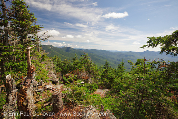 Scenic view from the summit of Mount Tecumseh in Waterville Valley, New Hampshire during the summer months.  If you are thinking the view looks better than you remember, its because someone has cut down a few trees to improve the view.