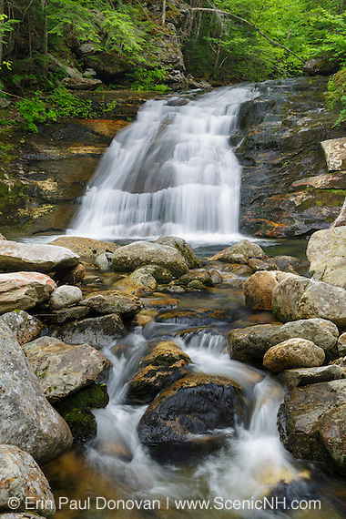 Quarta Cascade in Randolph, New Hampshire during the summer months. This is believed to be the forgotten Quarta Cascade.