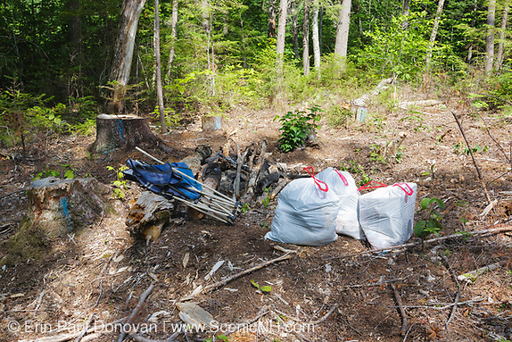 Poor leave no trace ethics on Fire road 511 along the Kancamagus Highway (route 112), which is one of New England's scenic byways in the White Mountains, New Hampshire. This road has many campgrounds but campers still prefer to camp off in the woods. Most outdoors men and women hate seeing this type of destruction to the forest.