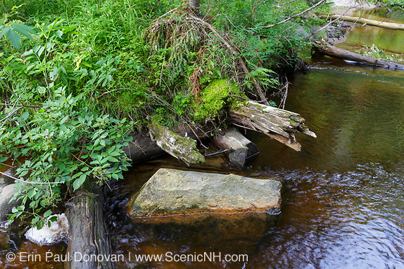April history; remnants of a trestle (may have been more of a bridge) at the Jackman Brook crossing along the Jackman Brook Branch of the Gordon Pond Railroad (logging railroad, 1907-1916) in Woodstock, New Hampshire.