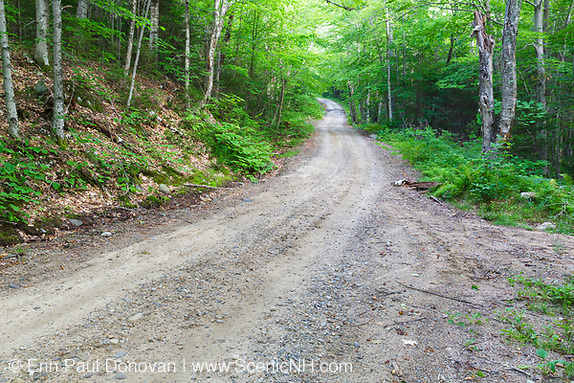 "August along the Sandwich Notch Road, established in 1801, in Sandwich, New Hampshire. This section of road is referred to as ""Winding Hill""."
