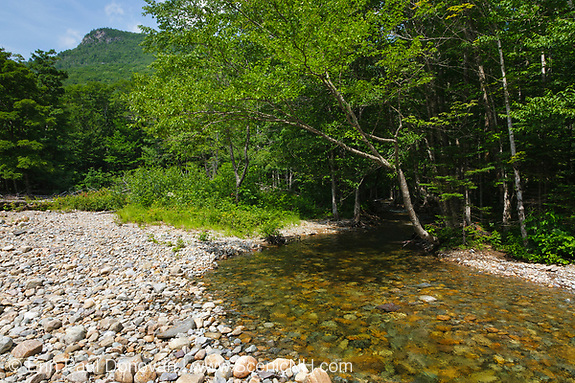 Franconia Brook in the Pemigewasset Wilderness in the White Mountain National Forest in New Hampshire during the summer months