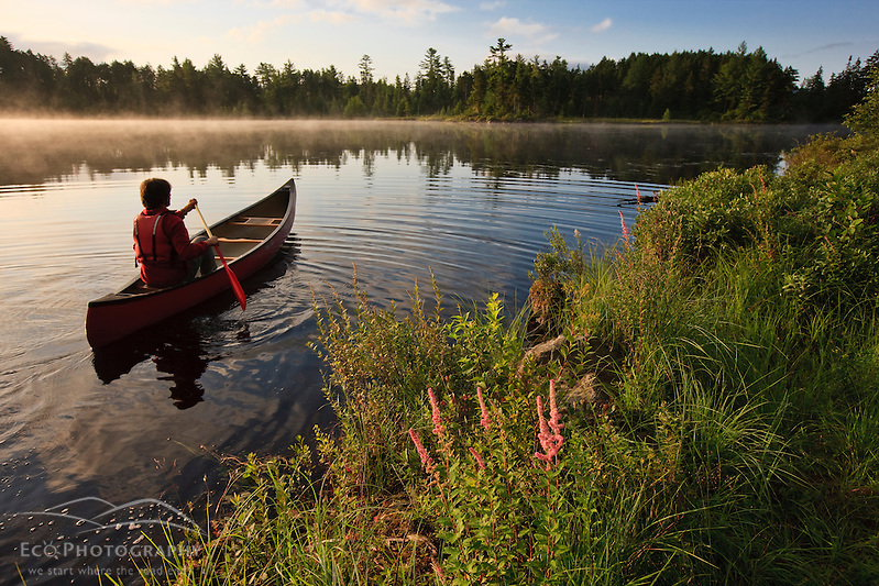 A man canoeing on Little Bear Brook Pond in Errol, New Hampshire. Northern Forest (Jerry and Marcy Monkman)