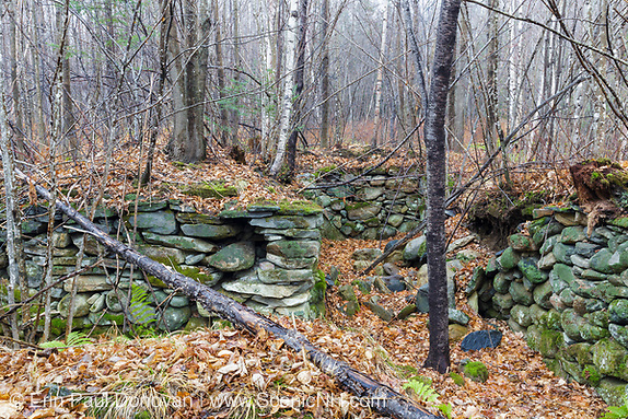 A cellar hole from the 1800s along the old North and South Road (now Long Pond Road) in Benton, New Hampshire during the month of November. Based on an 1860 historical map of Grafton County this was the homesite of Josiah F. Jeffers.