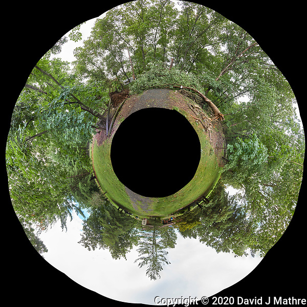 Little Planet View of my front yard after Tropical Storm Isaias. Composite of 22 images taken with a Leica CL camera and 18 mm f/2.8 lens (DAVID J MATHRE)