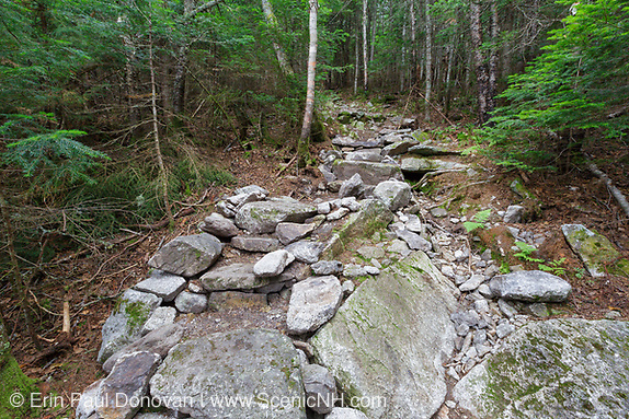 July 2012 - Less than two months after being built, this length of staircase along the Mt Tecumseh Trail in the New Hampshire White Mountains was falling apart. In August 2012, the stones were re-positioned and removed from the foot-bed of the staircase.