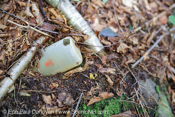 Plastic bottle with skull & crossbones on it in the forest of Kinsman Notch in Woodstock, New Hampshire USA during the summer months.