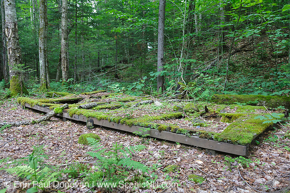 Decaying tent platform in the area of the old Franconia Brook campground along in Lincoln, New Hampshire.