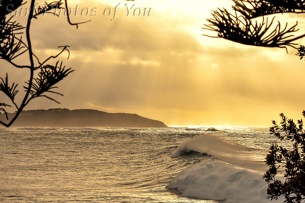 $45.00, 7 June 2019,Dee Why Point, Surf Photos of You, @surfphotosofyou, @mrsspopy ($45.00, 7 June 2019,Dee Why Point, Surf Photos of You, @surfphotosofyou, @mrsspopy)