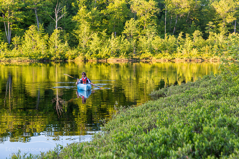 A man kayaking on Round Pond in Barrington, New Hampshire. (Jerry and Marcy Monkman)