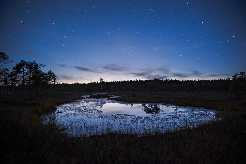 The very last moment of blue hour over calm bog pool, Ķemeri National Park, Latvia Ⓒ Davis Ulands | davisulands.com (Davis Ulands/Ⓒ Davis Ulands | davisulands.com)