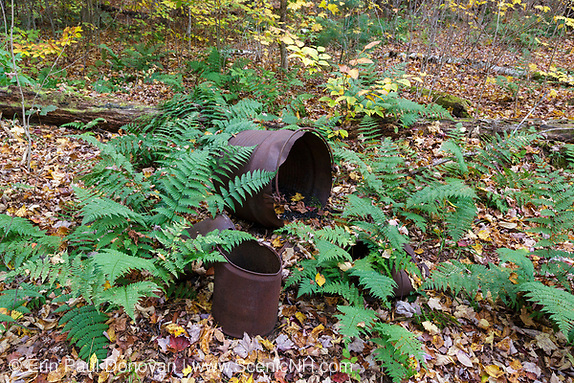 Artifacts at Camp 8 of the EB&L Railroad (1893 -1948) in the White Mountains, New Hampshire during the autumn months. The removal of historic artifacts from federal lands without a permit is a violation of federal law.