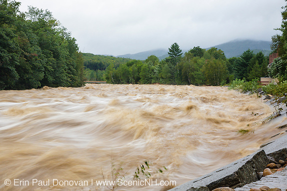 During the flash flood of the East Branch of the Pemigewasset River in Lincoln, New Hampshire USA during Tropical Storm Irene in 2011. Loon's South Mountain bridge can be seen downstream. This tropical storm / hurricane caused destruction along the East coast of the United States and the White Mountain National Forest of New Hampshire was officially closed during the storm.