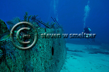Starboard Side of Bow Section, Oro Verde, Shipwreck, Grand Cayman (Steven Smeltzer)