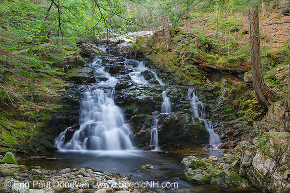 Gordon Fall on Snyder Brook in Randolph, New Hampshire during the summer months.