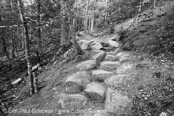 Black and white photo of newly built stone steps along the Davis Path during the summer months in the White Mountains, New Hampshire. This is an example of stone steps built by a professional trail crew.